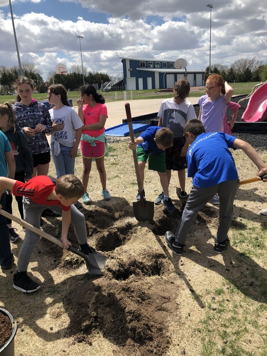 The 4th graders celebrated Arbor Day by planting a tree donated by the Wallace Lions Club.