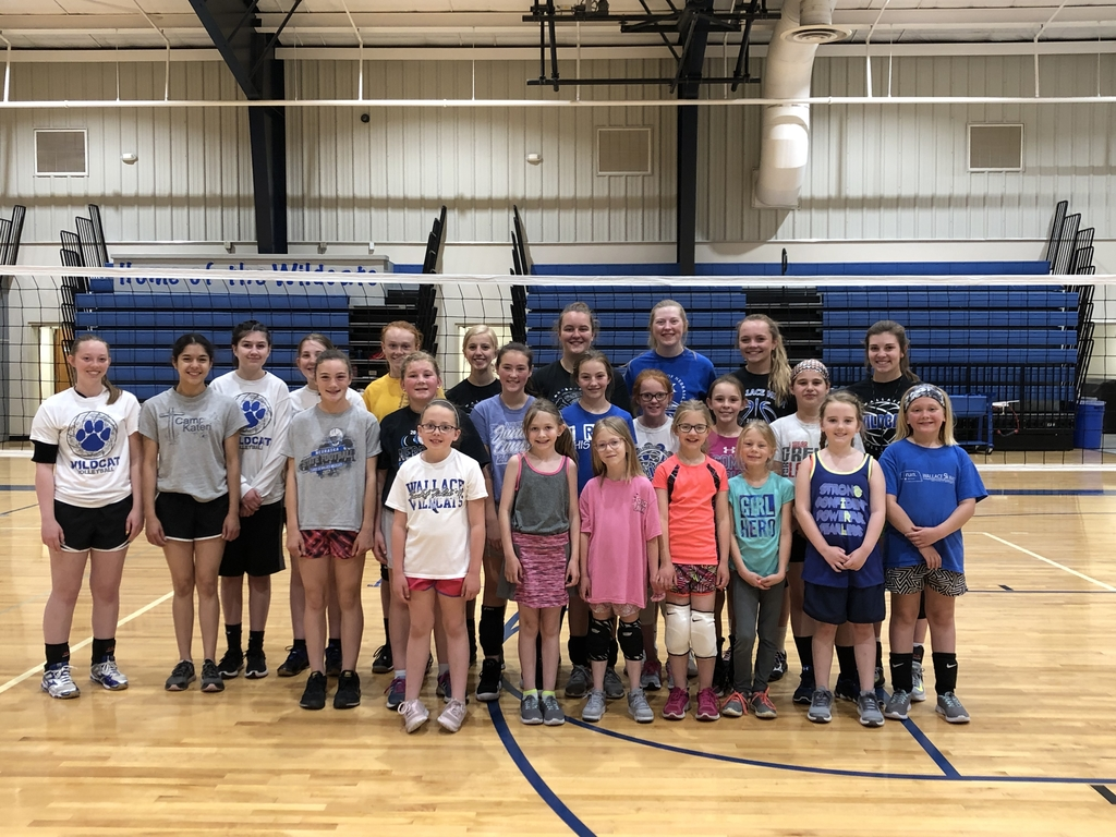 Wallace volleyball camp