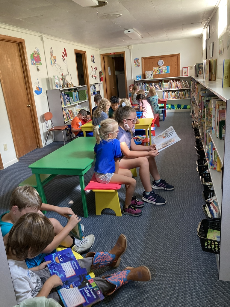 Reading buddies at the town library.